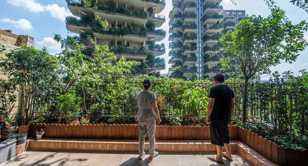 مشروع إسكان «حديقة غابات مدينة تشنغدو»، الصين 3 أغسطس/ آب 2020