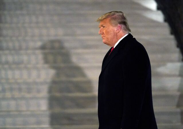 الرئيس الأمريكي، دونالد ترامب، 12 يناير 2020