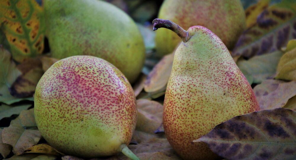 فاكهة الإجاص اللذيذة