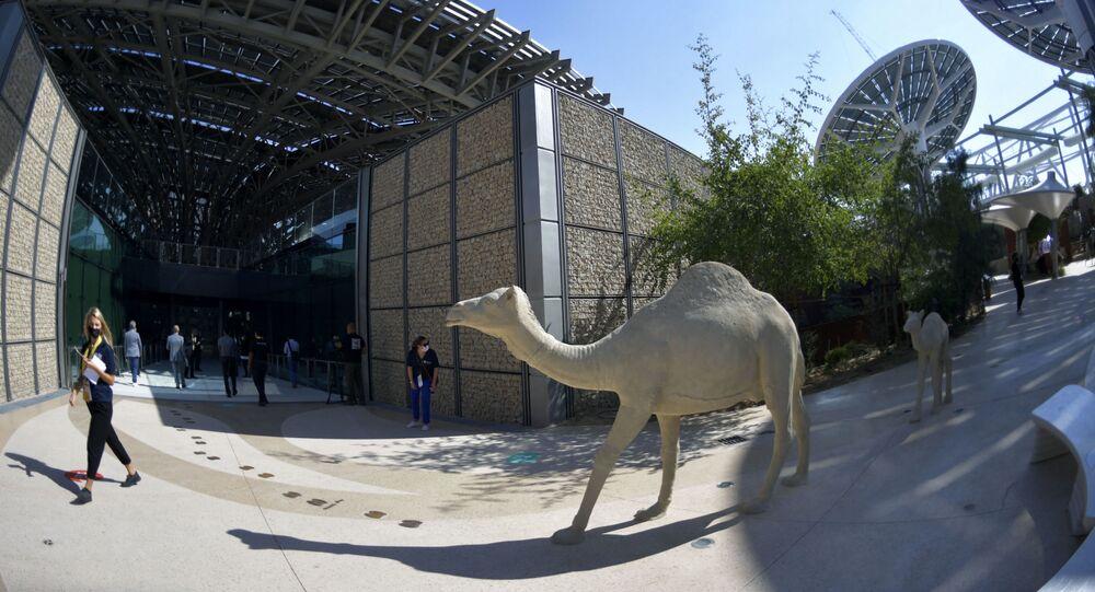 إكسبو 2020 - دبي