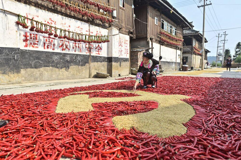 تُظهر هذه الصورة التي التقطت في 12 سبتمبر 2021 مزارعة تصنع علم الحزب الشيوعي الصيني من حبيبات الذرة والفلفل الأحمر، بينما يجفف المزارعون منتجاتهم المحصودة في كونغجيانغ بمقاطعة قويتشو جنوب غرب الصين.