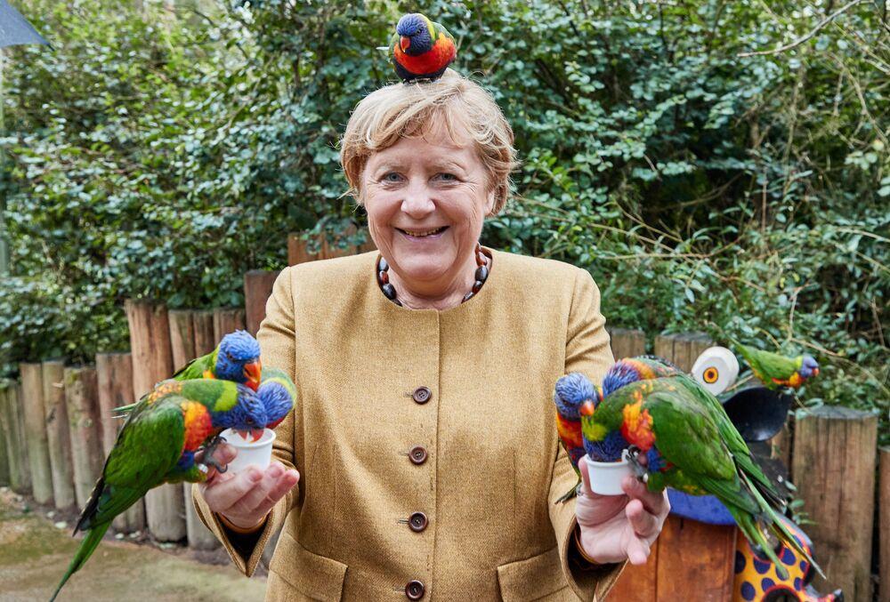 المستشارة الألمانية أنجيلا ميركل تُطعم طيور اللوريكيتس في حديقة الطيور في مارلو، شمال ألمانيا، 23 سبتمبر 2021، قبل أيام قليلة من الانتخابات الفيدرالية الألمانية في 26 سبتمبر.