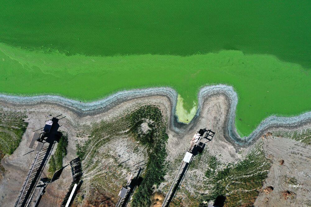 منظر جوي، أزهار البكتيريا الزرقاء، التي تسمى أيضًا الطحالب الخضراء المزرقة، تحول المياه إلى اللون الأخضر في كلير ليك في ريدبد بارك، كاليفورنيا، الولايات المتحدة 26 سبتمبر 2021 في كليرليك، كاليفورنيا.