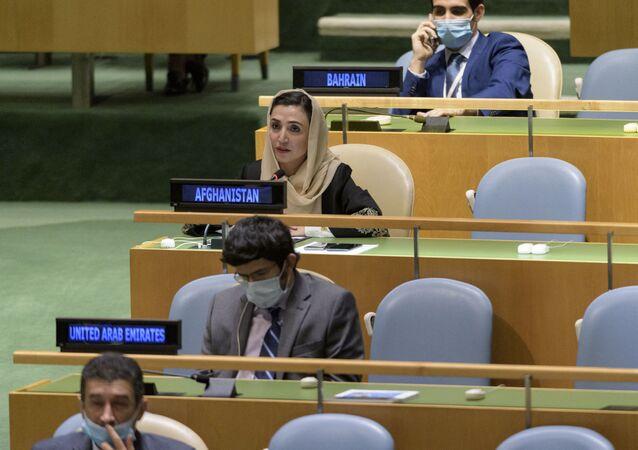 سفيرو أفغانستان في الولايات المتحدة الأمريكية، أديلا راز