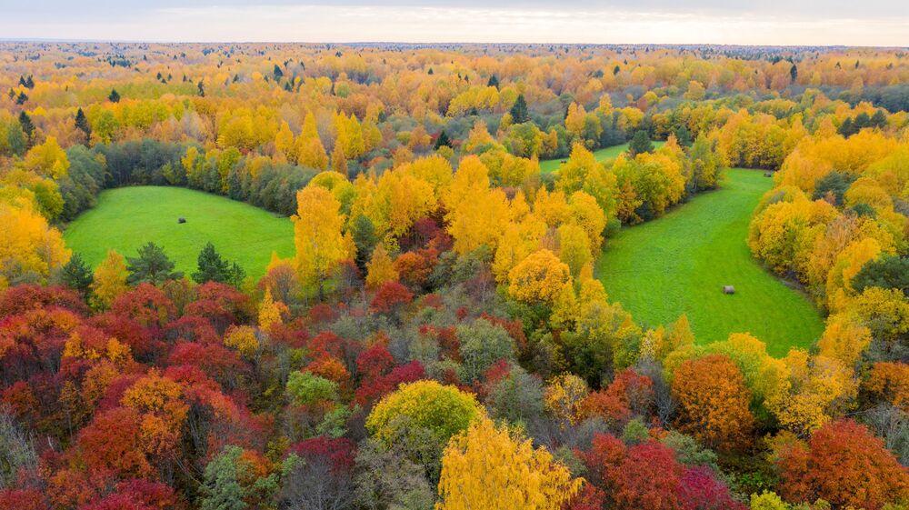 غابات وحقول جمهورية كاريليا الروسية، 2 أكتوبر 2021