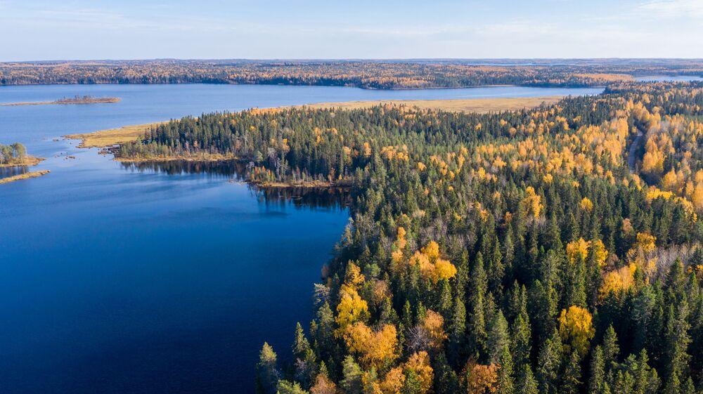 غابات تتلون بألوان فصل الخريف على خلفية بحيرة في جمهورية كاريليا الروسية، 2 أكتوبر 2021