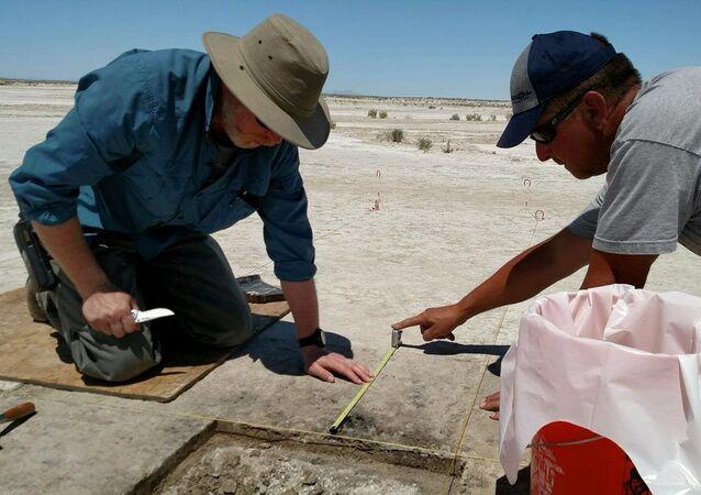 اكتشاف في صحراء يوتا الأمريكية يدل على استخدام البشر للتبغ قبل 12300 عام
