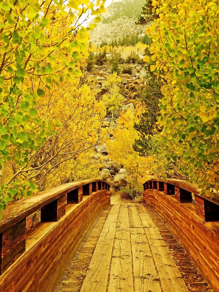 الخريف في ولاية كاليفورنيا الأمريكية