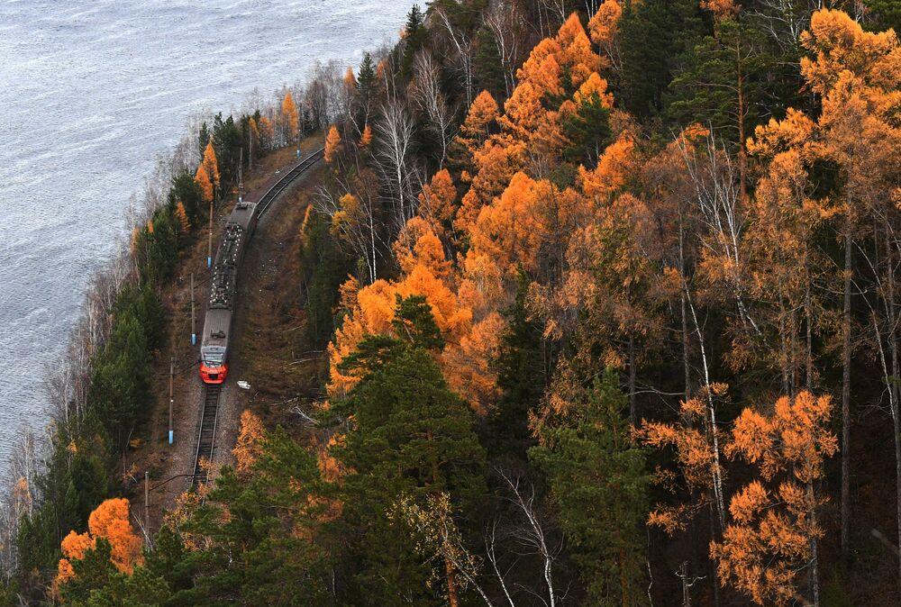 يتحرك قطار كهربائي في الضواحي على طول نهر ينيسي في خريف شرق التايغا السيبيرية في إقليم كراسنويارسك الروسي.