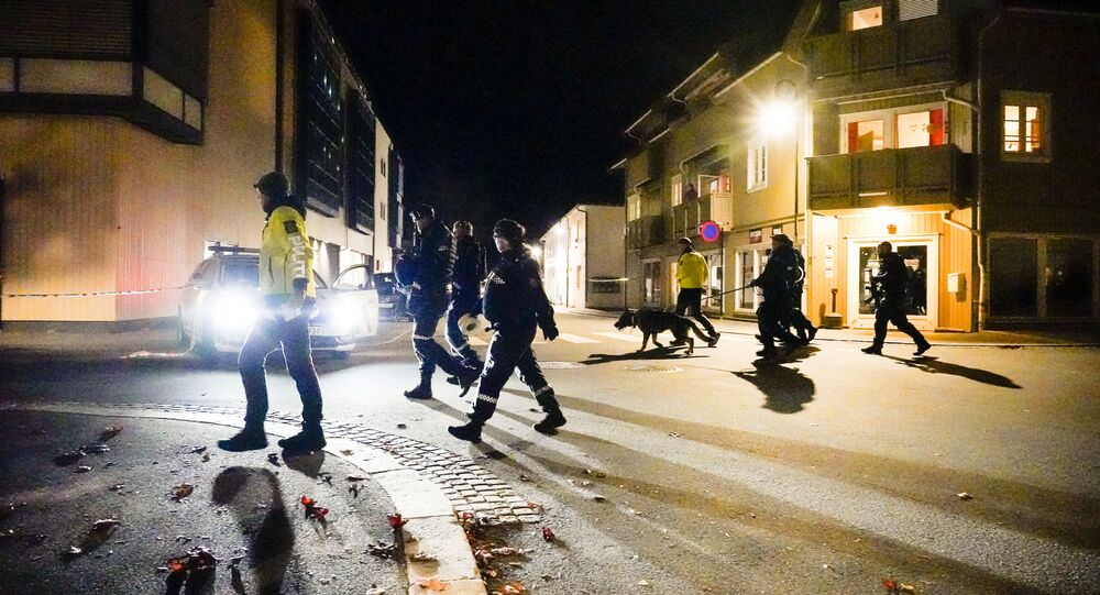 الشرطة: رجل يقتل عددا من الأشخاص في هجمات بالقوس والسهام في النرويج