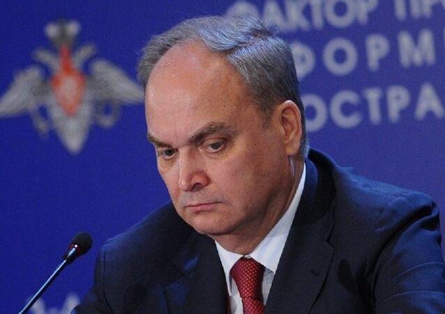 أناتولي أنطونوف
