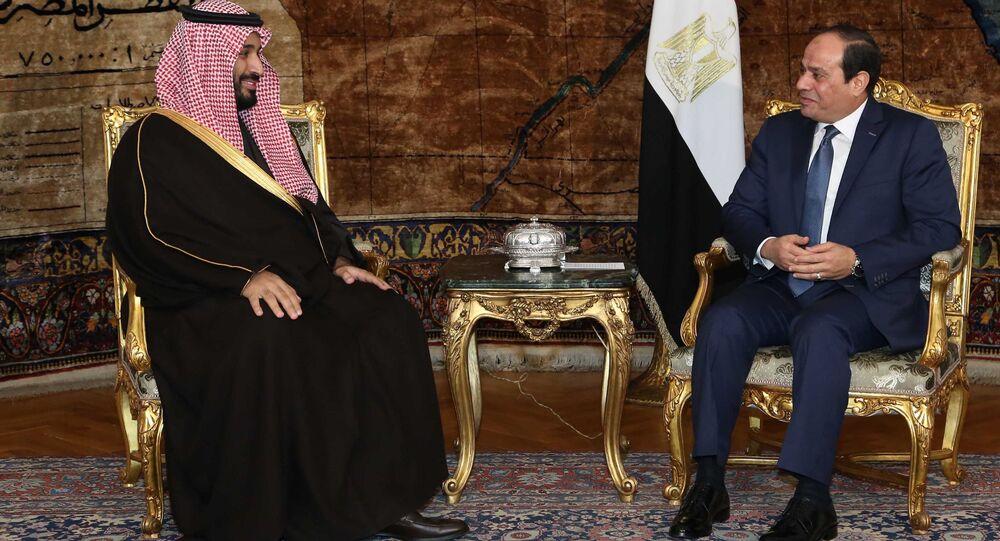 عبد الفتاح السيسي و محمد بن سلمان