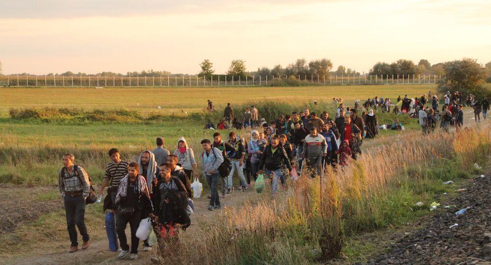 لاجئون على الحدود الصربية المجرية