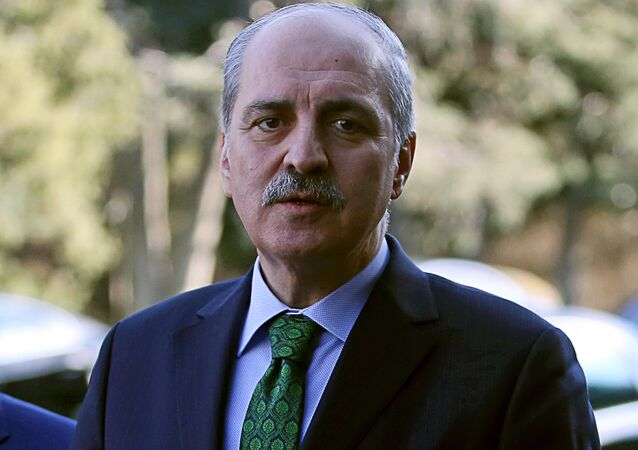 نائب رئيس الوزراء التركي نعمان كورتولموش