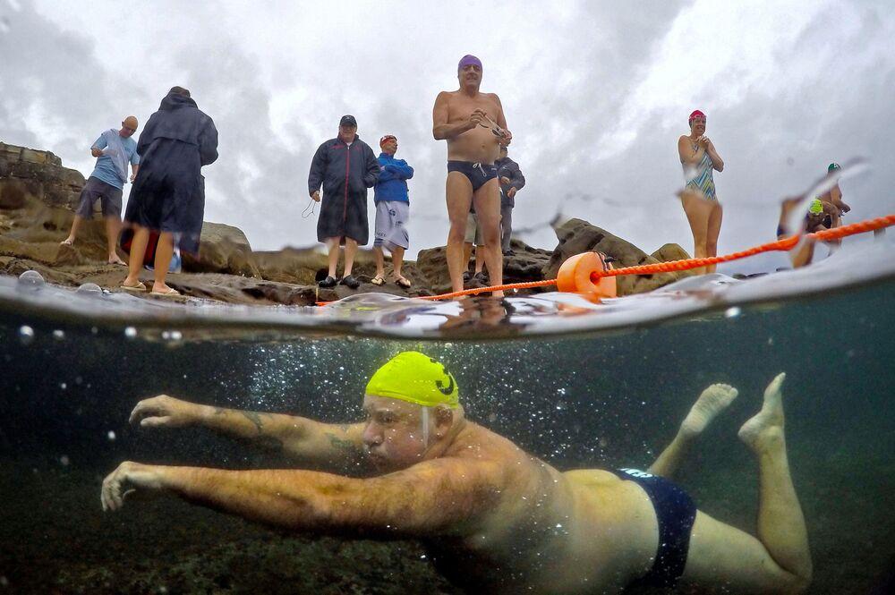 أعضاء نادي للسباحة Maroubra Winter Seals في جنوب مدينة سيدني، أستراليا 19 يوليو/ تموز 2016