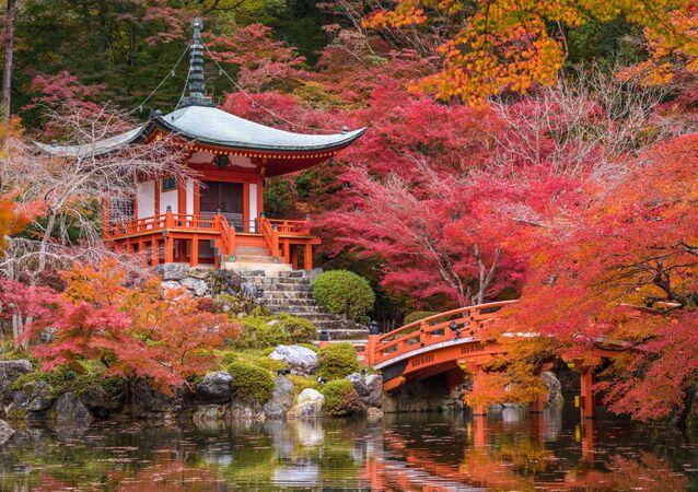 كيوتو، اليابان