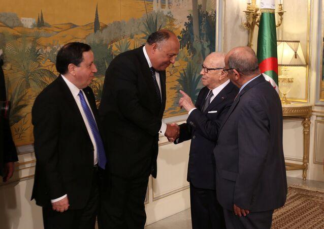 وزراء خارجية مصر وتونس والجزائر بجانب الرئيس التونسي الباجي قايد السبسي
