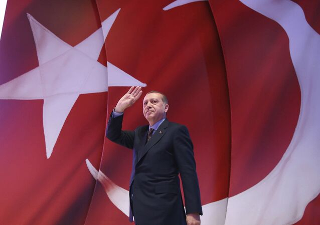 رئيس تركيا رجب طيب إردوغان خلال تجمع المظاهرات بخصوص الدستور التركي
