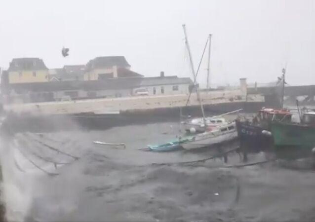 إعصار أوفيليا