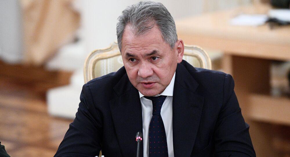 وزير الدفاع الروسي سيرغي شويغو، 22 ديسمبر/ كانون الأول  2017