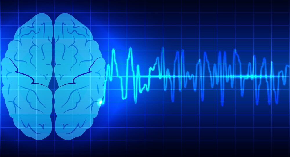 Модель мозга на компьютерном экране