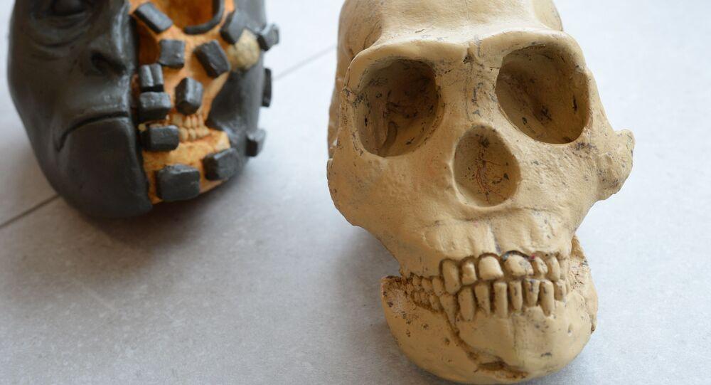 توفي في كهف قديم وبعث في موسكو في القرن الـ 21: المصير الرائع لإنسان Homo naledi