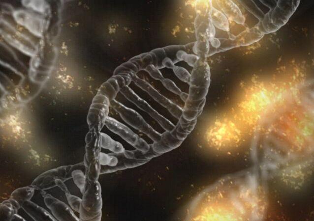 العلماء يعثرون على الجين الذي حول القرد إلى إنسان