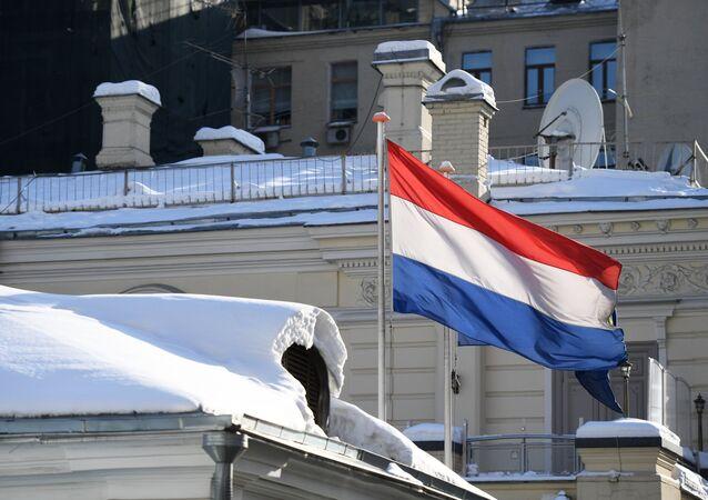 العلم الهولندي