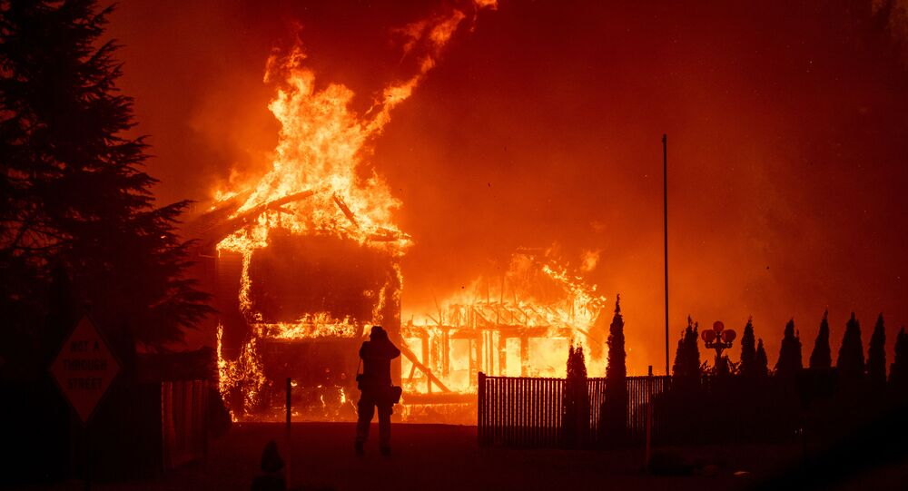 حريق في غابات كاليفورنيا