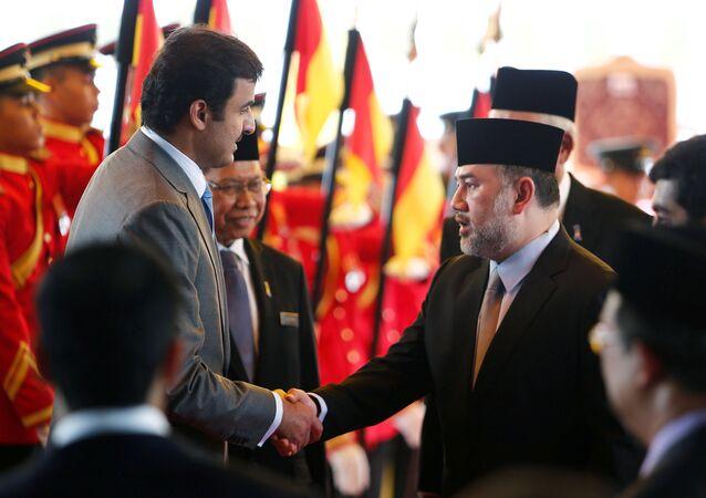 ملك ماليزيا السلطان محمد الخامس