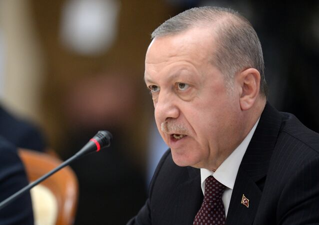 الرئيس التركي رجب طيب أردوغان في لقاء سوتشي، روسيا 14 فبراير/ شباط 2019