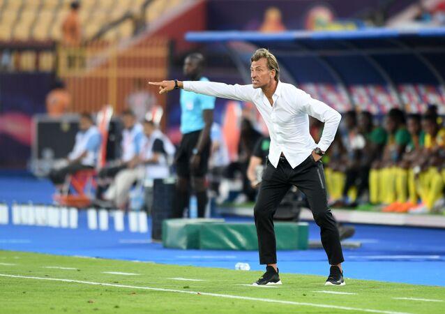 هيرفي رينارد مدرب المغرب