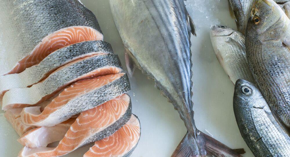 سمك السلمون الطازج في متجر
