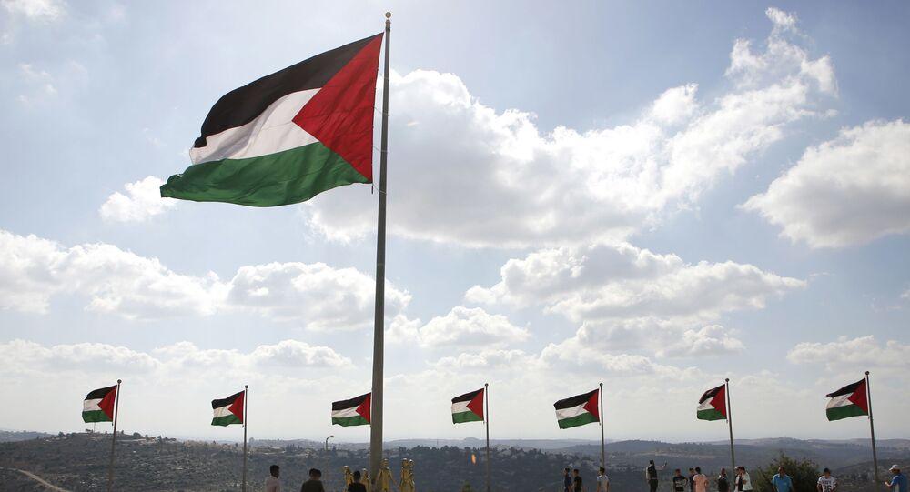 علم فلسطين في مدينة روابي، الضفة الغربية، فلسطين، أرشيف 2017