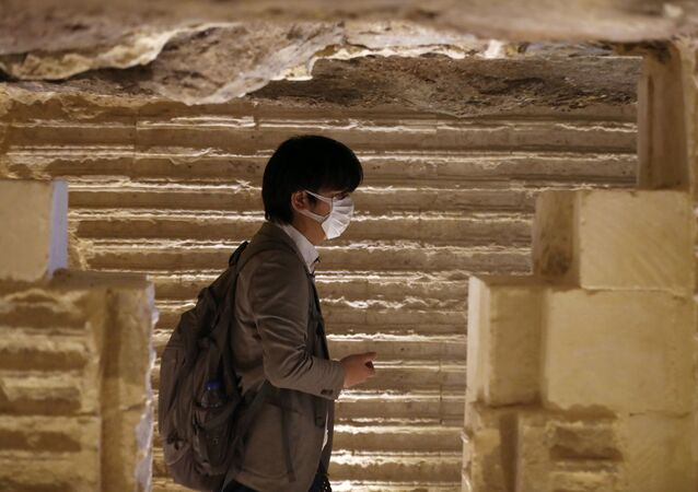 سائح يرتدي كمامة في أحد المزارات السياحية في مصر للوقاية من فيروس كورونا